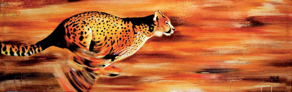 Rohanó gepárd - olajfestmény illusztráció