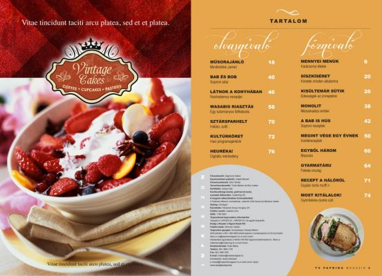 Paprika Magazin - layout design