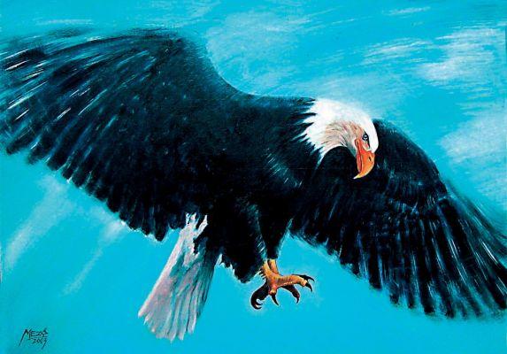 Sas - olajfestmény illusztráció