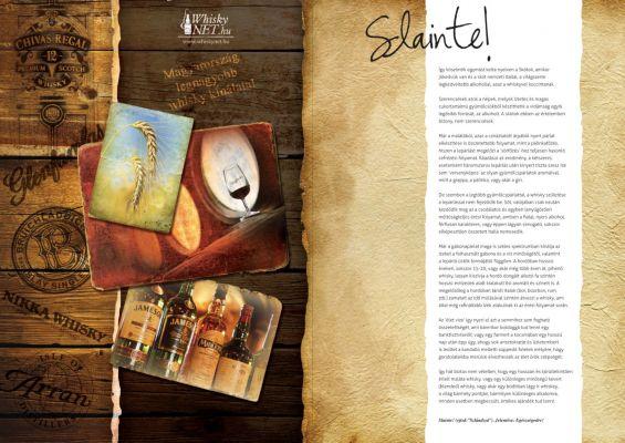 Whiskynet - prospektus belív design